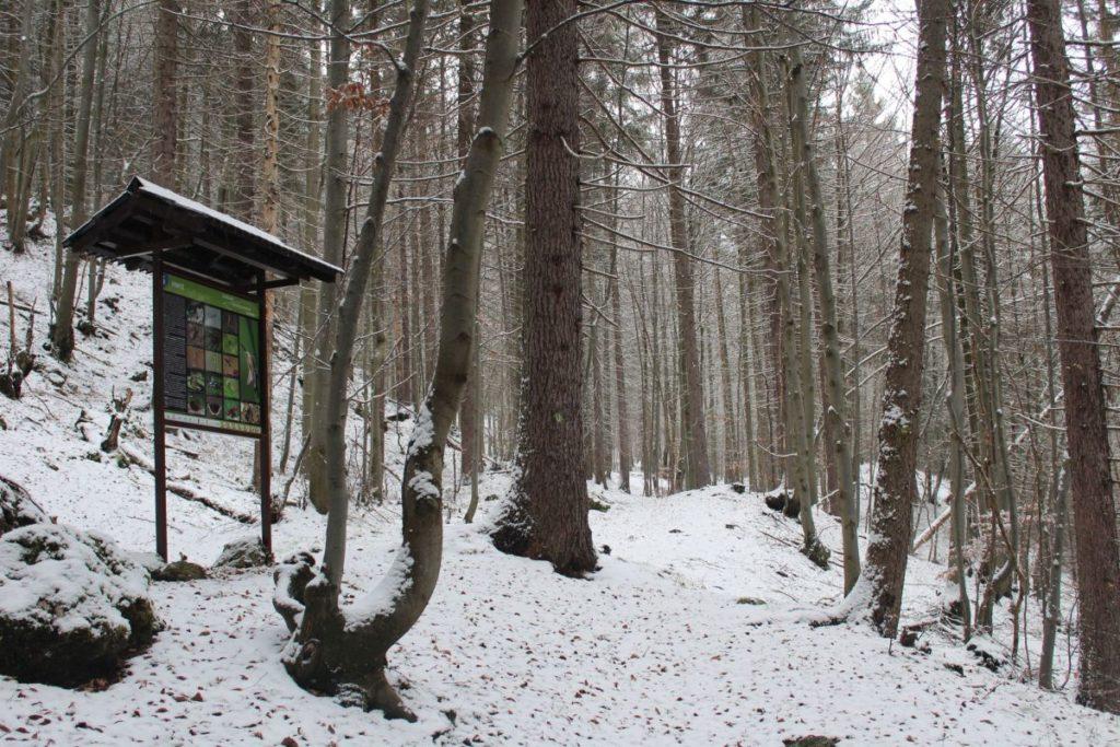 Švošovský turisticko-náučný chodník 06