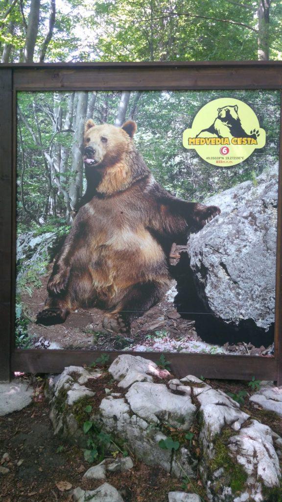 Náučný chodník Medvedia cesta 07