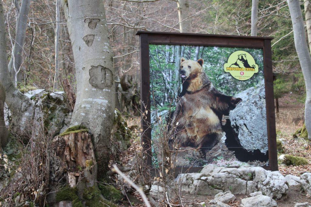 Náučný chodník Medvedia cesta 20