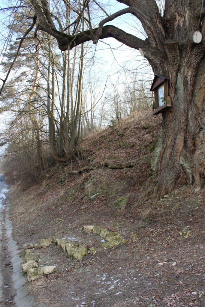 Zastavenie Biely Potok, pri moste 04