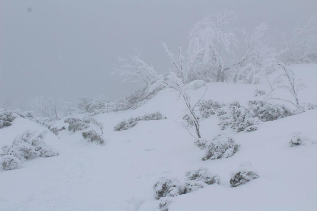 Na Veľký Choč v zime 05