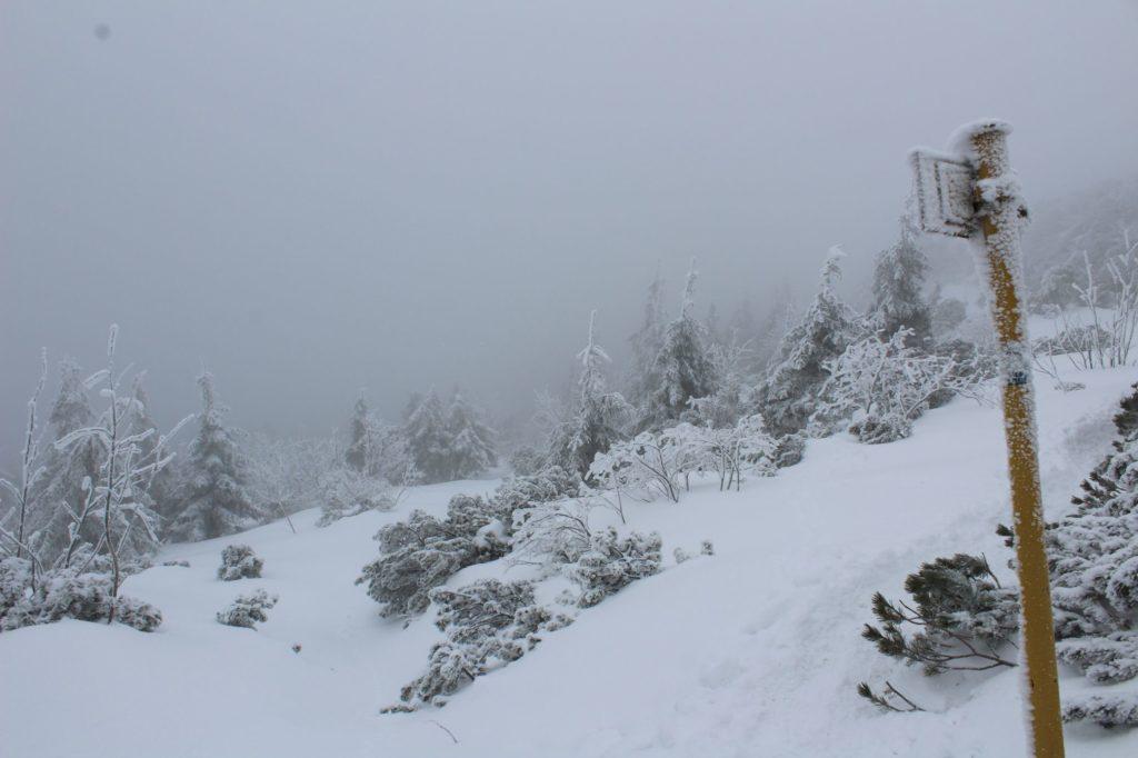 Na Veľký Choč v zime 06