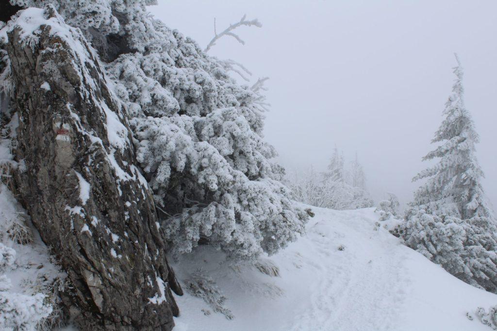 Na Veľký Choč v zime 07