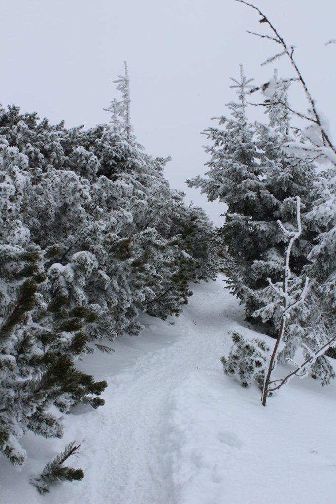 Na Veľký Choč v zime 08