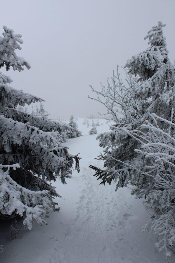 Na Veľký Choč v zime 13