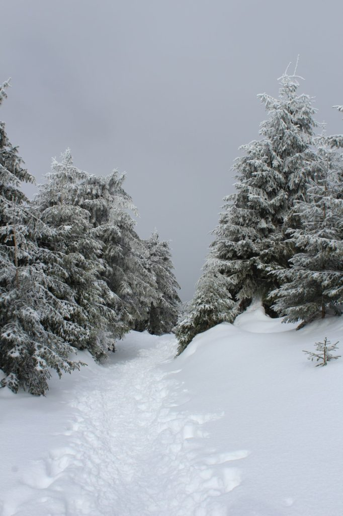 Na Veľký Choč v zime 16