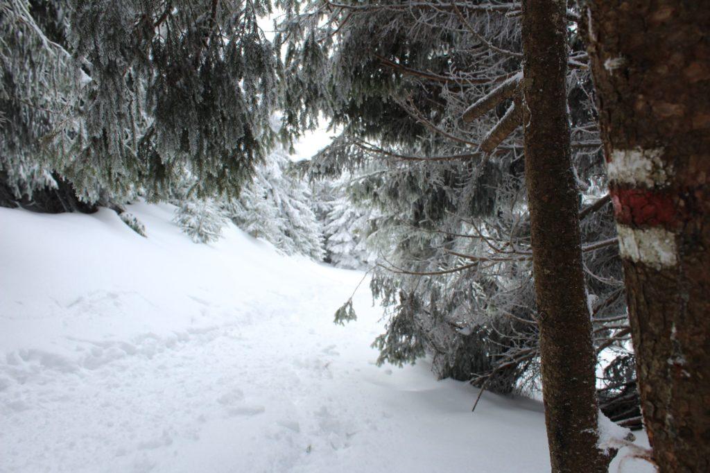 Na Veľký Choč v zime 17