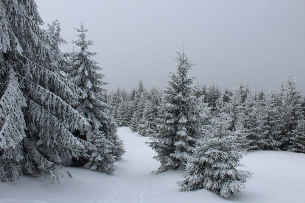 Na Veľký Choč v zime 18