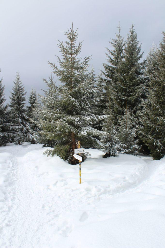 Na Veľký Choč v zime 19
