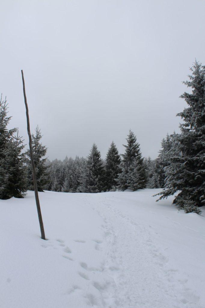Na Veľký Choč v zime 20