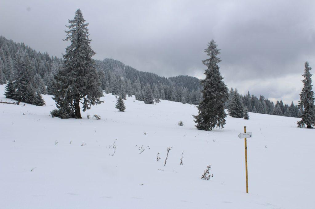 Na Veľký Choč v zime 21