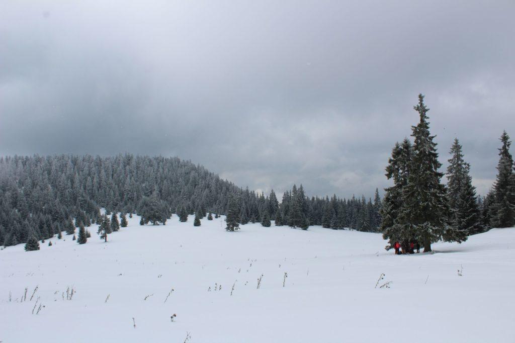 Na Veľký Choč v zime 22