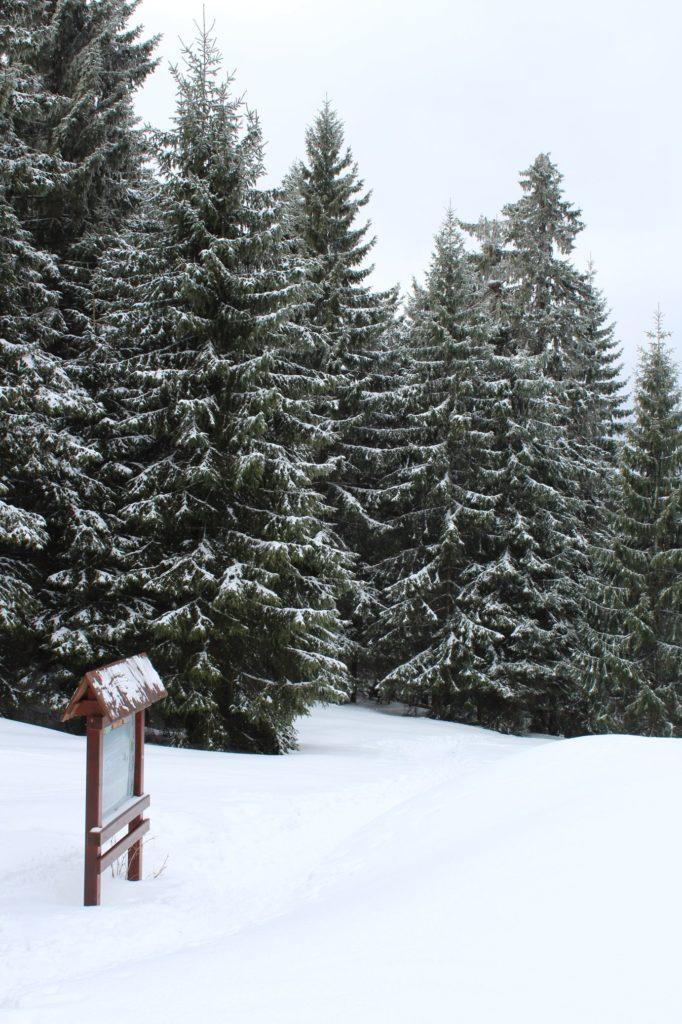 Na Veľký Choč v zime 24