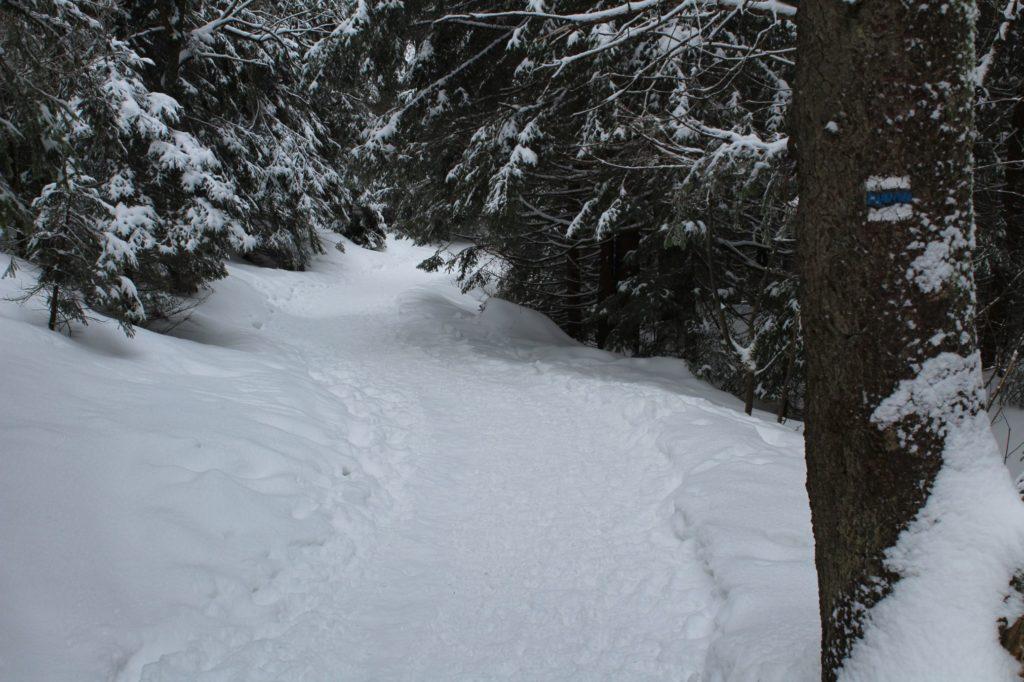 Na Veľký Choč v zime 25