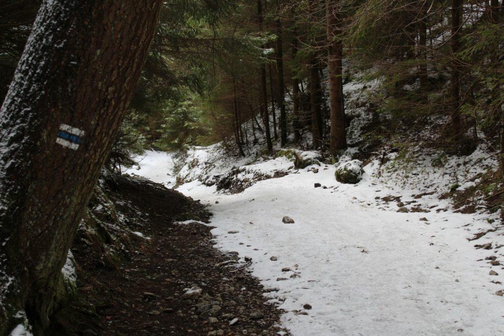 Na Veľký Choč v zime 31