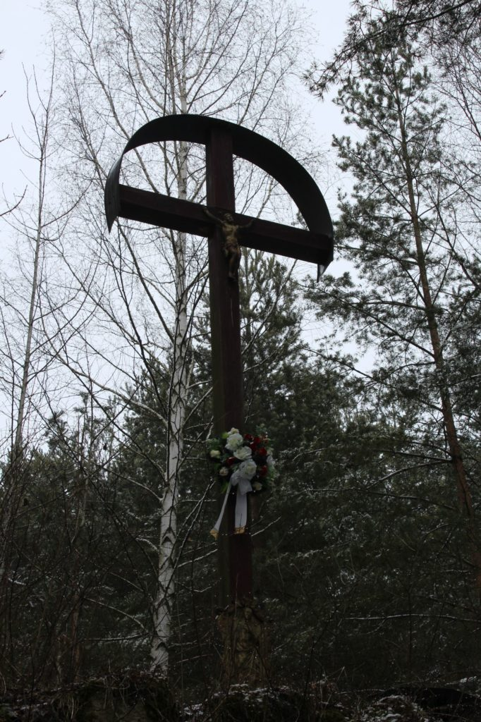 Kríž v lesoparku Hrboltová 06