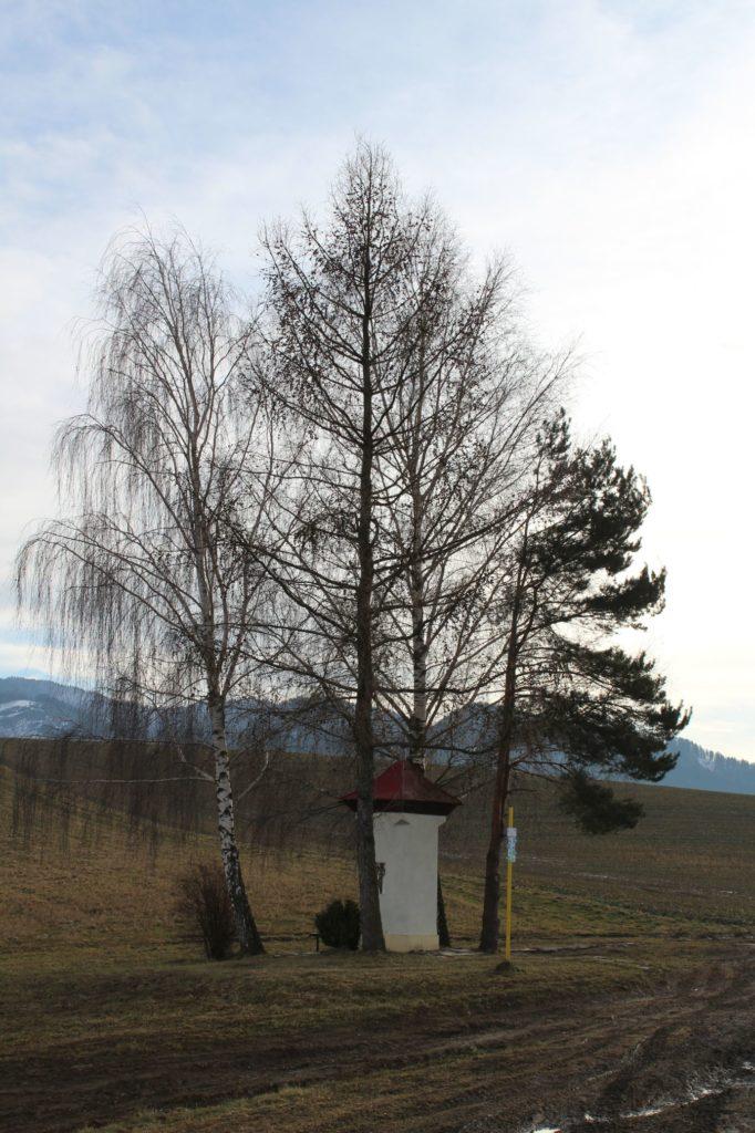 Kaplnka Liptovská Štiavnica, Pri božej muke 01