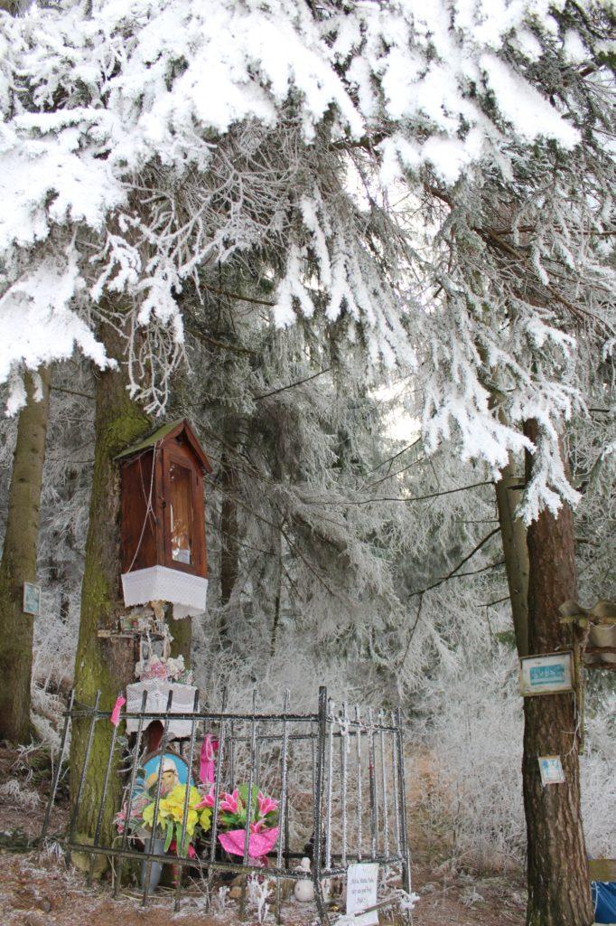Zastavenie Liptovské Sliače - Stredný, pod lesom nad ulicou Horná Roveň 05