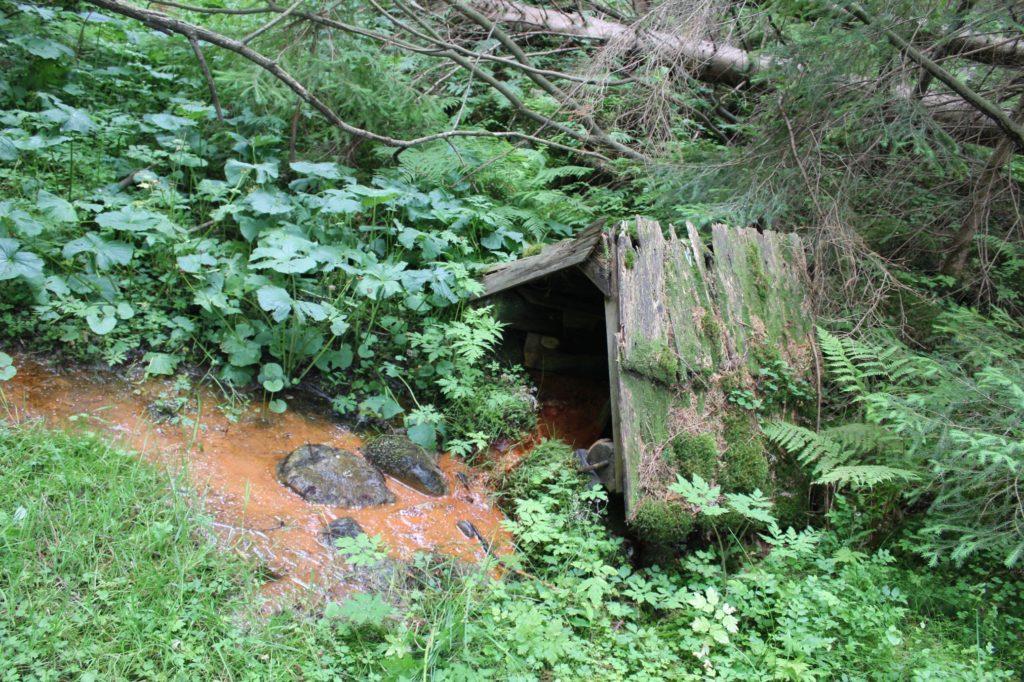 Minerálny prameň Kadluba v Banskom, Liptovská Lúžna 05