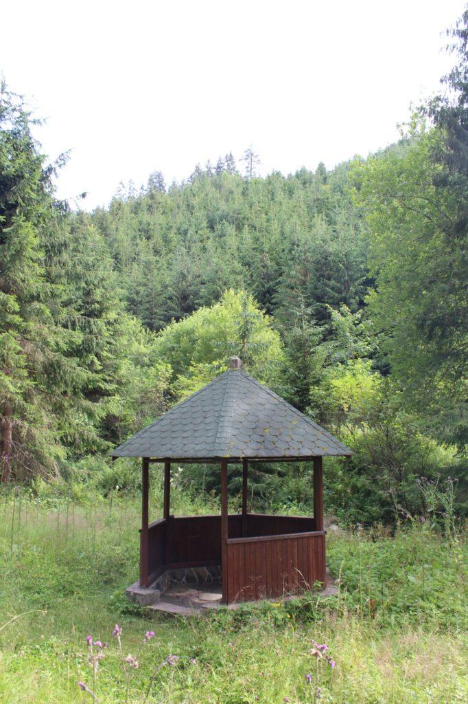Minerálny prameň Medokýš v Banskom, Liptovská Lúžna 03