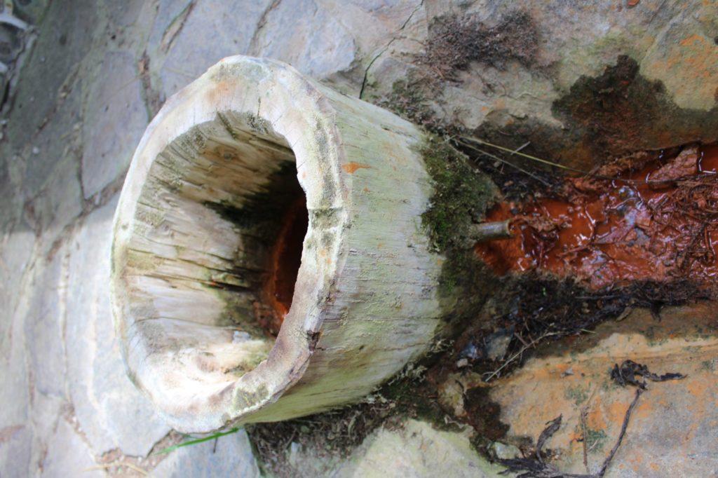 Minerálny prameň Medokýš v Banskom, Liptovská Lúžna 06