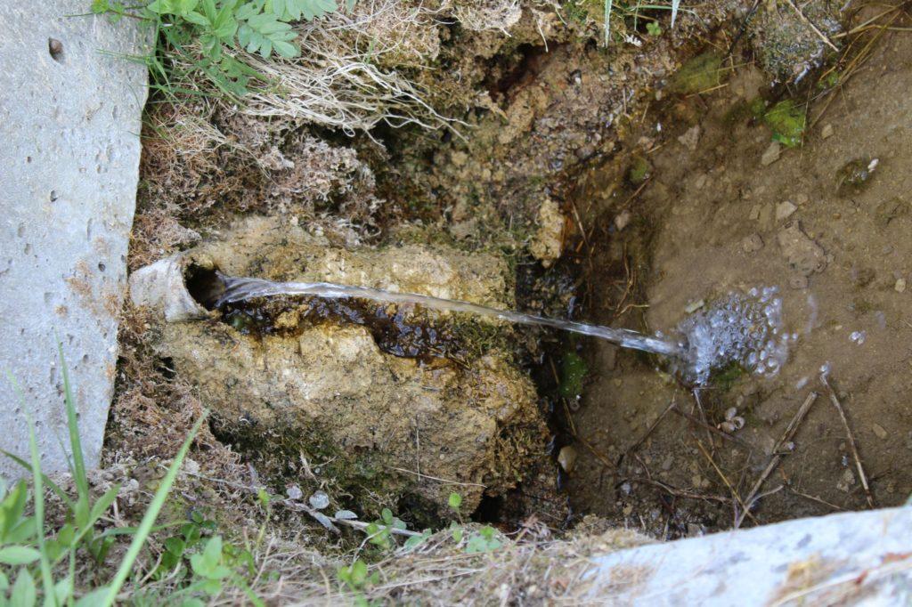 Minerálny prameň Vyšňanský medokýš, Liptovská Štiavnica 06