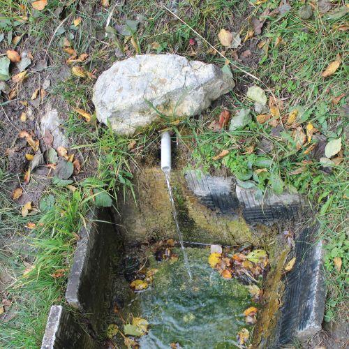 Prameň Medzi Hroble, Lisková