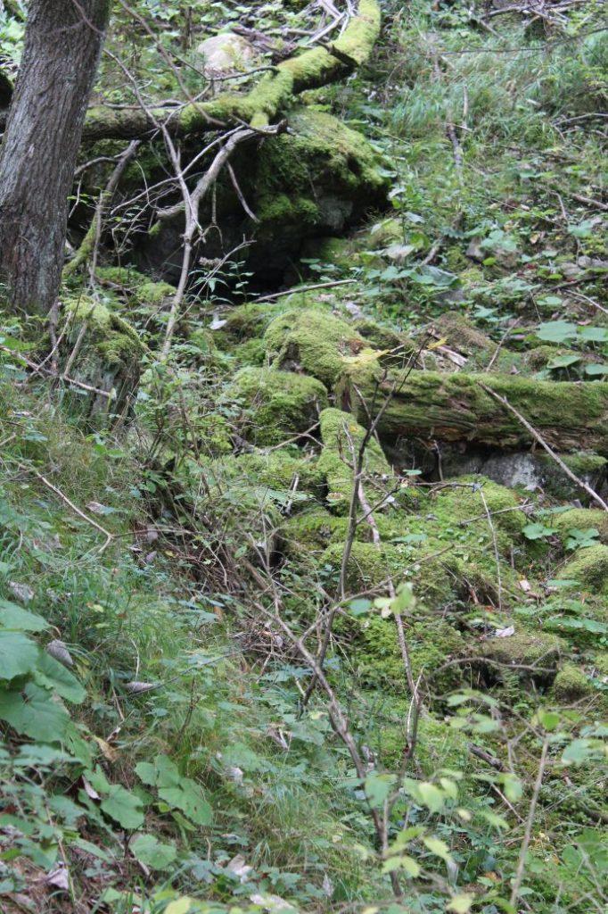 Prameň nad Medzi Hroblami, Lisková 03