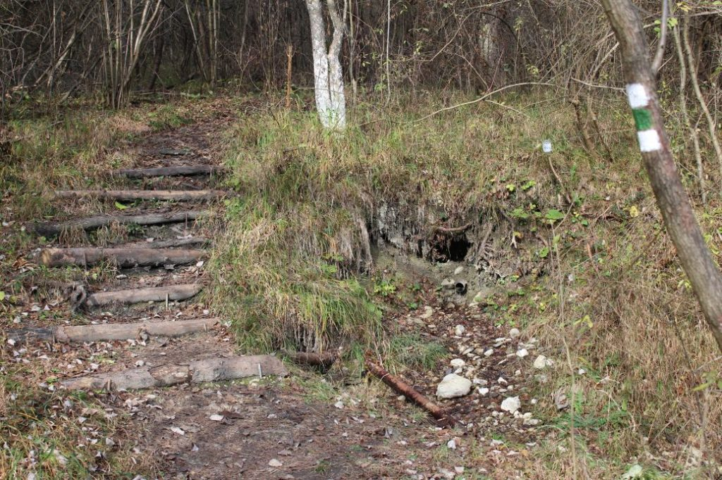 Prameň pri Kuskovej vile, Likavka 01