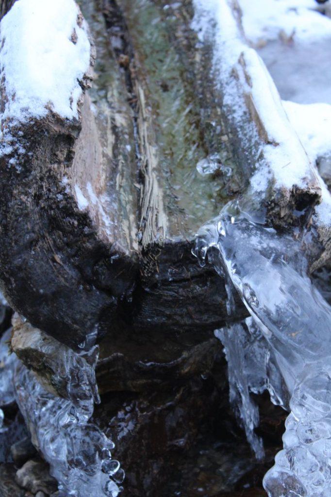 Prameň pri Sedle pod Čiernym kameňom, Ľubochňa 06
