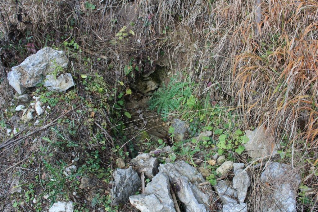 Prameň pri Vyšnom jazierku medzi Čebraťmi, Likavka 04